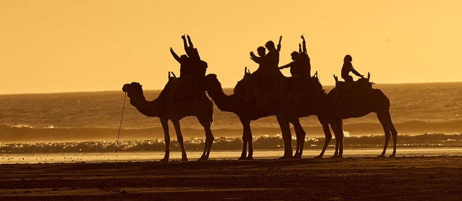 Essaouira Morocco day trip from Marrakech