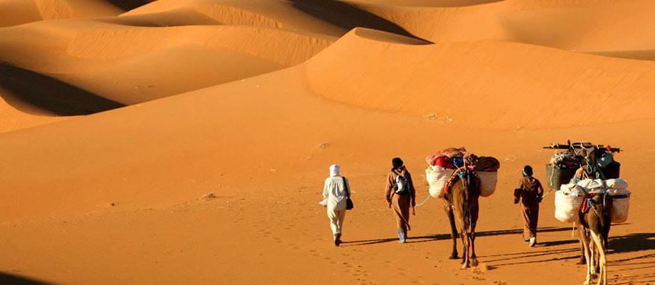 Marrakech camel trek day trip