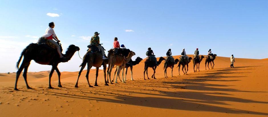Marrakech camel trek overnight
